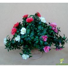 bouquet de fleur d'azalée